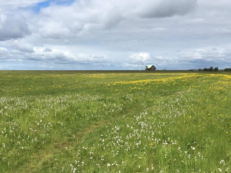 IJsland - huisje