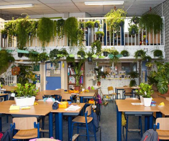 Binnenbos in een klaslokaal