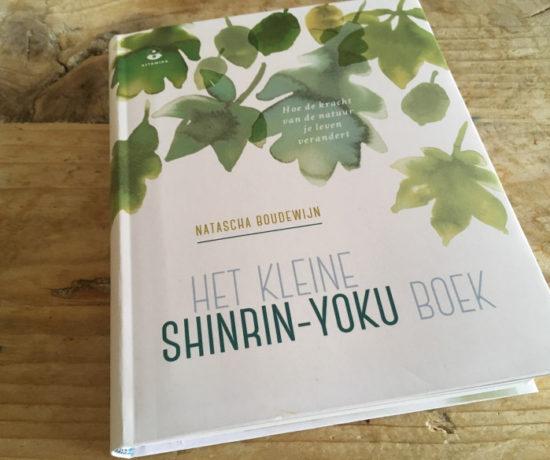 Het kleine shinrin-yoku boek - Natascha Boudewijn